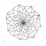 Blume /34