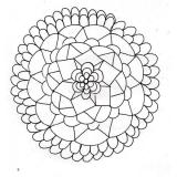Blume /36