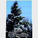 Weihnachtskarte /1